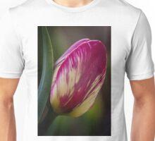 Tulips, Washington State Unisex T-Shirt