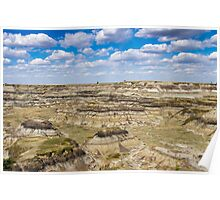 Horseshoe Canyon Poster