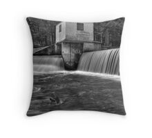 Fifty-Fifty Throw Pillow