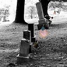 Patriot's Grave by Bob Fox
