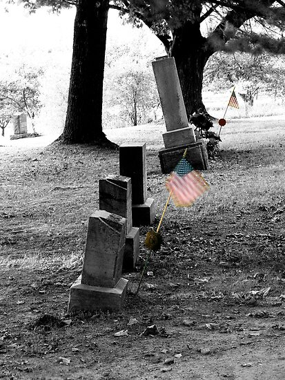 Patriot's Grave by Bob Fox