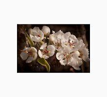 Apple Blossoms, Cascade Valley, Washington Unisex T-Shirt