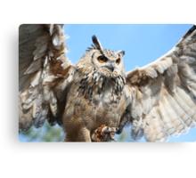 Taking Off - Owl In Flight Canvas Print