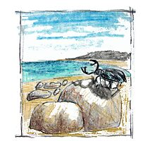 BEETLE ON THE BEACH by evafriese015