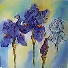 Transitions - Purple Iris by bevmorgan