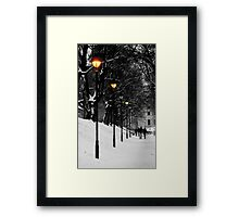 OnePhotoPerDay series: 026 by L. Framed Print
