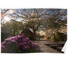 Take in the lovely Springtime Poster