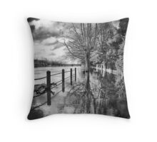 Deep roots in time and place Throw Pillow