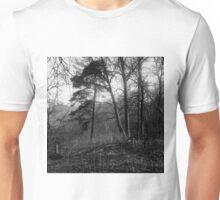 traditional russian landscape Unisex T-Shirt