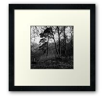 traditional russian landscape Framed Print