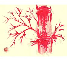 Fire Bamboo - watercolor and dry brush painting Photographic Print