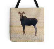 "Nice Young Bull Moose...""I'm a Handsome Dude"" Tote Bag"