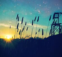 Summer Nights at the Old Mine by Steph Enbom