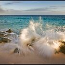 Splash! by Lucy Hollis