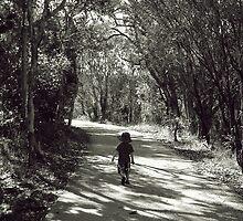 On the Path by Katie Weychardt