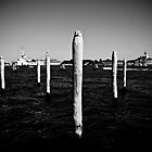 Venice by IgorPetrovic