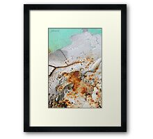 Winter's Demise Framed Print