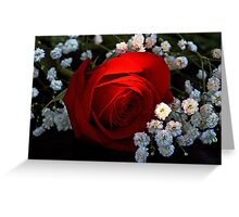 Rose of Love Greeting Card