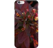 The gift of color. iPhone Case/Skin