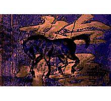 Asian Watercolour Horse ... Photographic Print