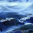 Water Art by Len Bomba