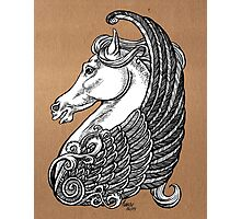Pegasus or simply horse with wings.  Photographic Print