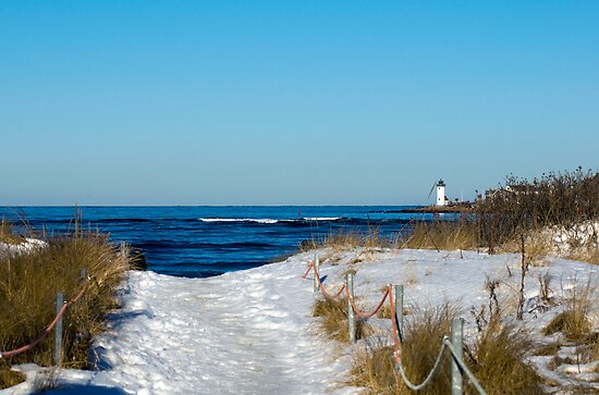 Snowy Path to the Beach by Monica M. Scanlan