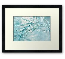 Dew Drops and Bokeh Framed Print
