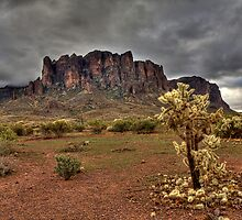 At the Base of the Superstitions by Sue  Cullumber