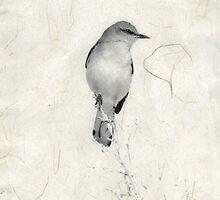 Bird Poem by Elena Ray