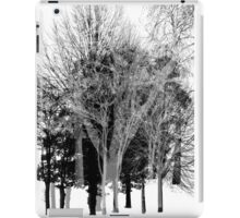 Gray-scale Forest iPad Case/Skin