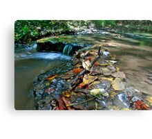 Up Stream Metal Print
