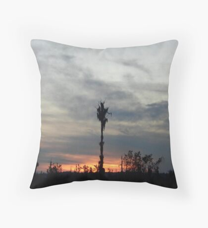 My feet to the fire... Throw Pillow