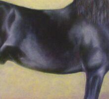 """Mink""   Friesian Stallion Sticker"