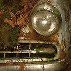 Moss is my Blanket   Studebaker Collection by Brandon Taylor