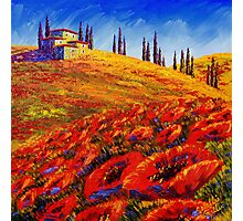 Tuscany Rolling Poppy Hills Photographic Print