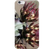Cactus Buds iPhone Case/Skin