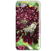 Bee at Work iPhone Case/Skin