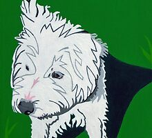 Wirehaired Jack Russell Terrier by Slade Roberts