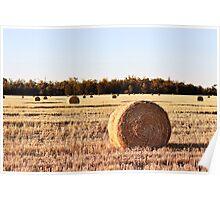 Round Hay Bales - Goondiwindi Australia Poster