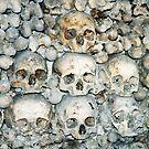 Bones by mjds