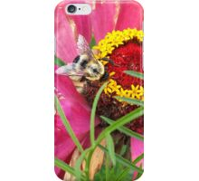 Bee on Flower iPhone Case/Skin
