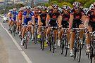Santos Tour Down Under 2010 Stage 5 Peloton on Aldinga Rd II by DavidIori