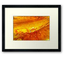 Rim of Your Desire Framed Print