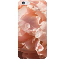 Classic Pink Beauty, Illuminated iPhone Case/Skin