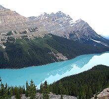 Peyto Lake, Alberta by Kris  Kennedy