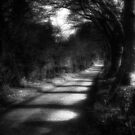 It's a Long Road Ahead by Nicola Smith