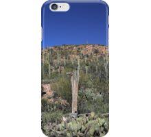 Saguaro National Park Landscape iPhone Case/Skin