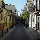 Spanish Alley by Andrew IR