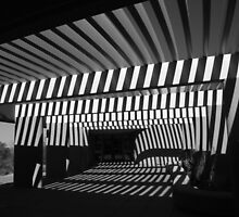 Saguaro National Park Visitor's Center 1 BW by marybedy